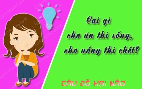 cai-gi-cho-an-thi-song-cho-uong-thi-chet